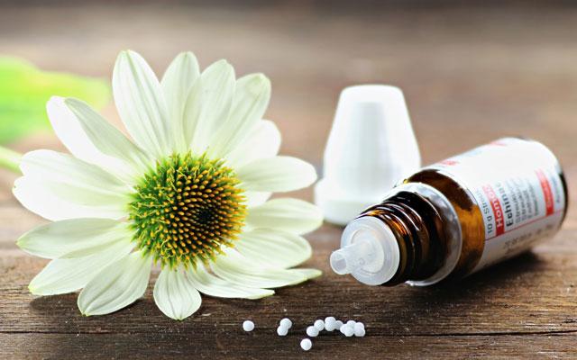 In unserer Praxis bieten wir Homöopathie an. - Praxis für Akupunktur und TMC München.